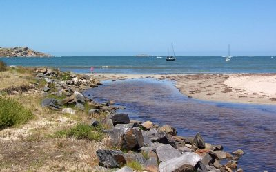 Things to do during the July School Holidays in Victor Harbor